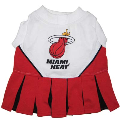 Heat Cheerleader Dog Dress