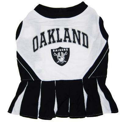 NFL Cheerleader Dog Dress