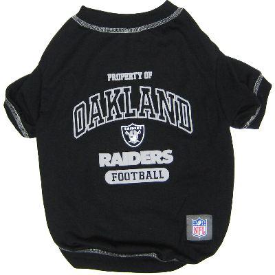 NFL Tee Shirt
