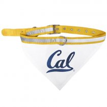 California Golden Bears NCAA Dog Collar Bandana