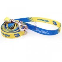 Dale Earnhardt NASCAR Dog Leash