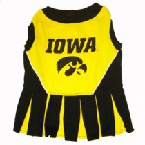 Iowa Hawkeyes Cheerleader Dog Dress