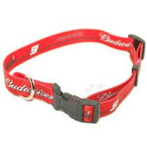 Kasey Kahne NASCAR Dog Collar