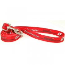 Kasey Kahne NASCAR Dog Leash