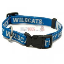 Kentucky Wildcats NCAA Dog Collar
