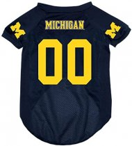 Michigan Wolverines NCAA Hunter Jersey