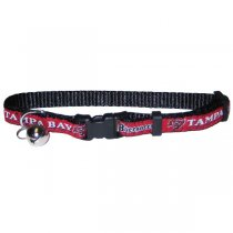 Tampa Bay Buccaneers NFL Cat Collar