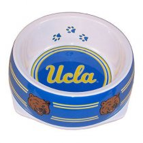 UCLA Bruins Designer Dog Bowl