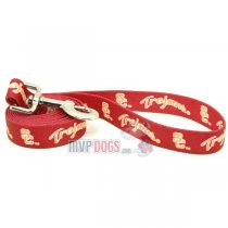 USC Trojans NCAA Dog Leash