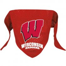 Wisconsin Badgers NCAA Dog Bandana