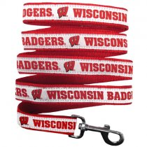 Wisconsin Badgers Woven Dog Leash
